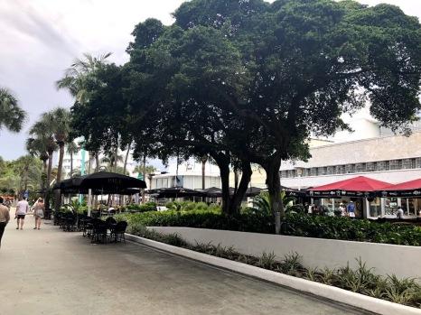 Miami 24