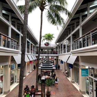 Miami 49