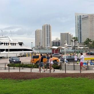 Miami 50